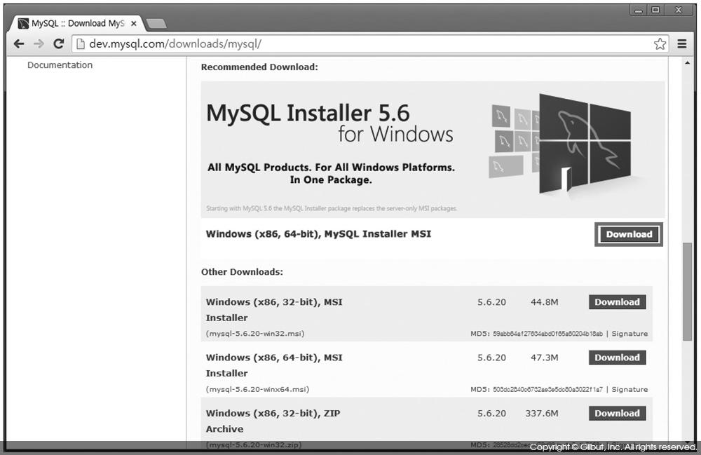 그림 4-2 Windows MySQL MSI Installer